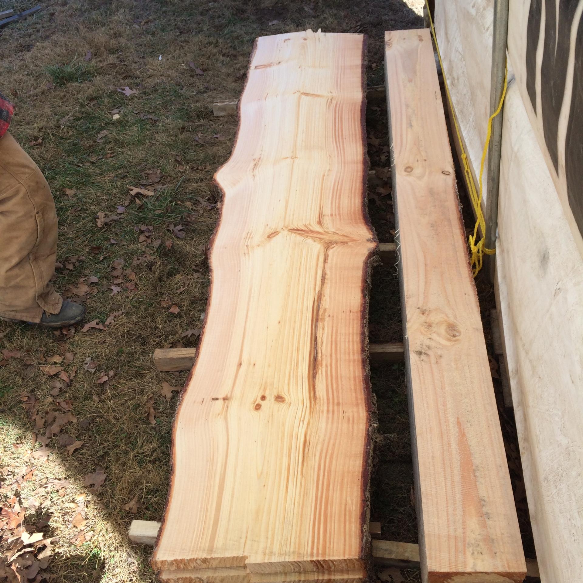 Big live edge pine