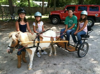 pony parties, ponies, horses, riding lessons, pony rides