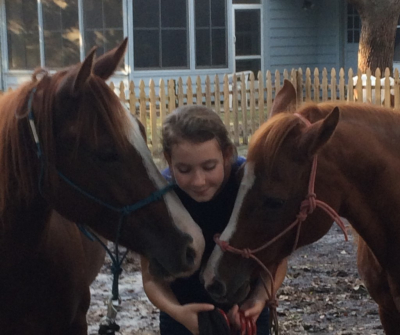 pony parties, ponies, horses, riding lessons