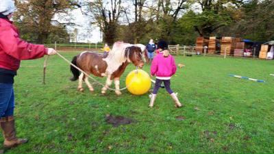 Pony football