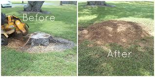 Stump Grinding leave chips