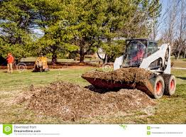 Stump Removal Remove Chips
