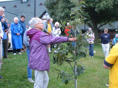 Our closing climate action...the dedication of a white oak at Mahoney State Park