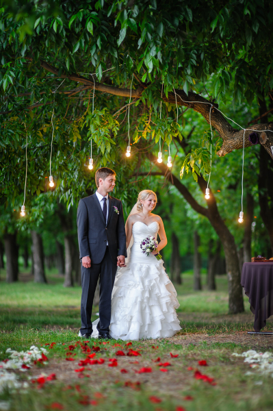 Hanging lights from tree arch