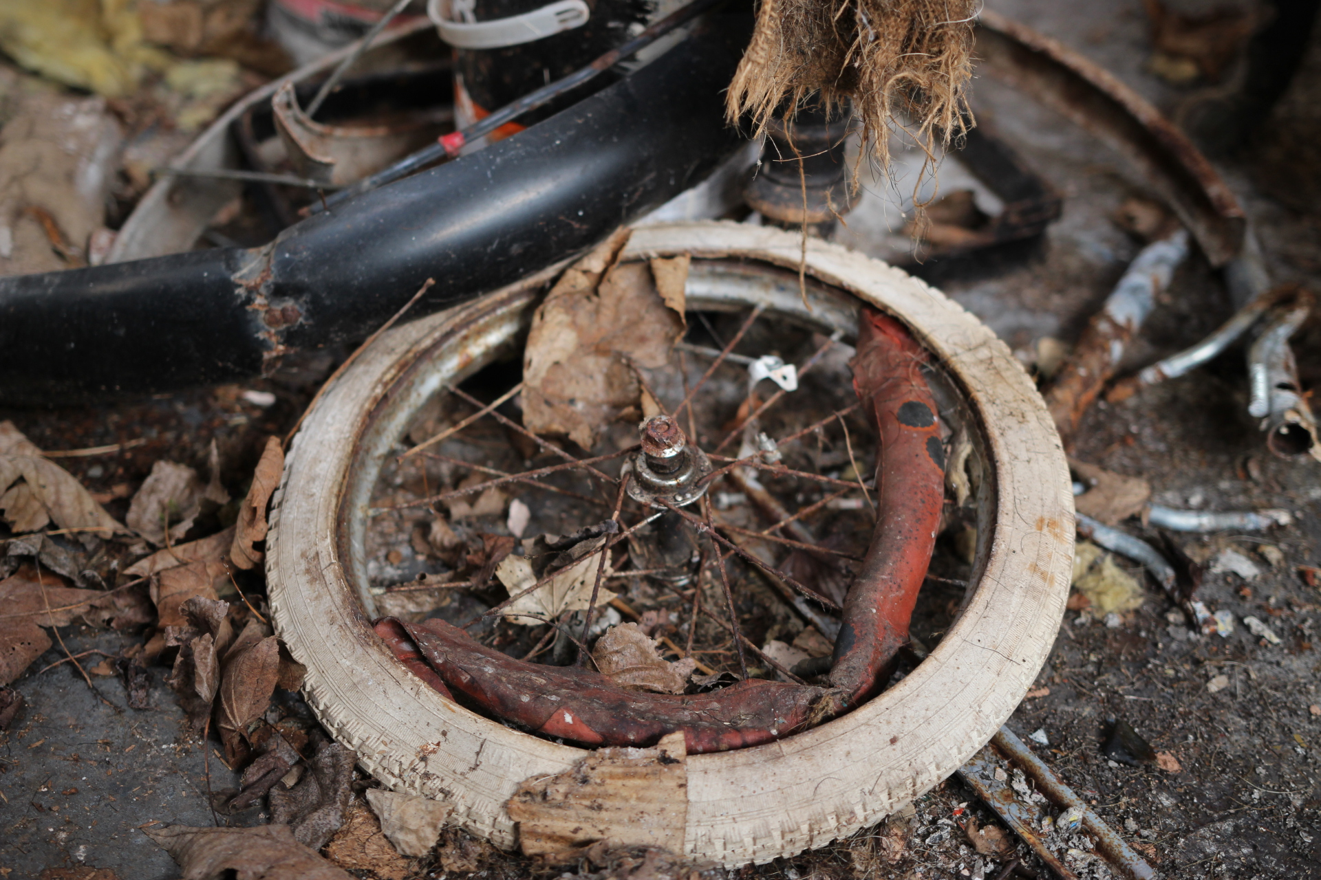 Forgotton Bike