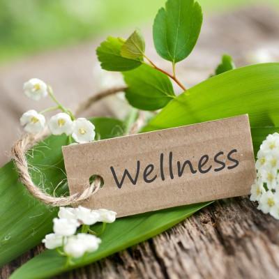 Photo sourced from http://www.freedomwellness.com.au/10-reasons-you-need-a-wellness-coach/