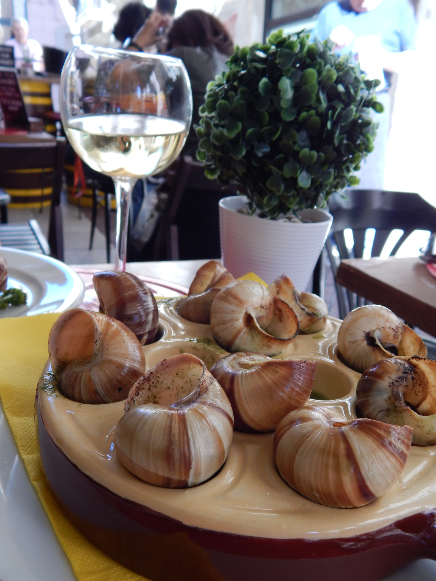 Escargot & White Wine