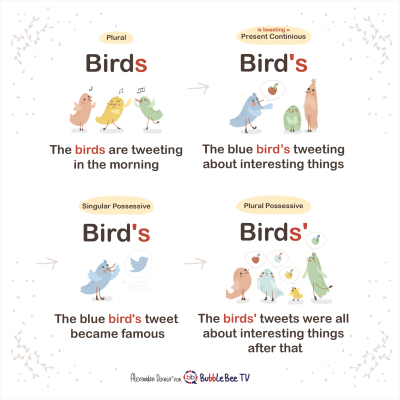 birds, bird's, birds' - How to use apostrophe in English