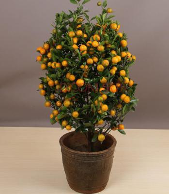 Honey Mandarin Orange