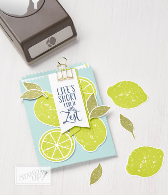 Lemon Zest Bundle