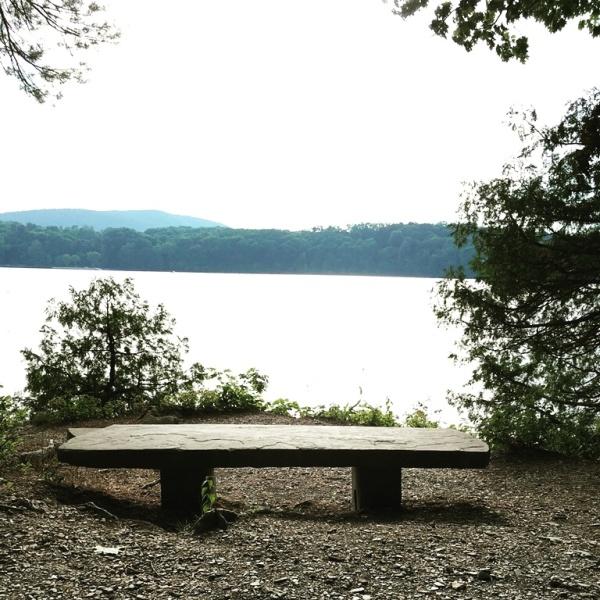 Hudson River Views