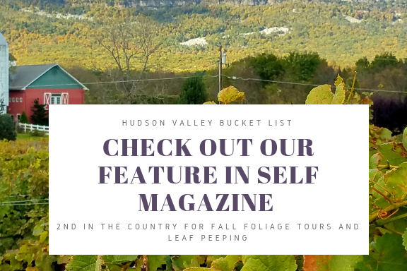 Thank you Self Magazine