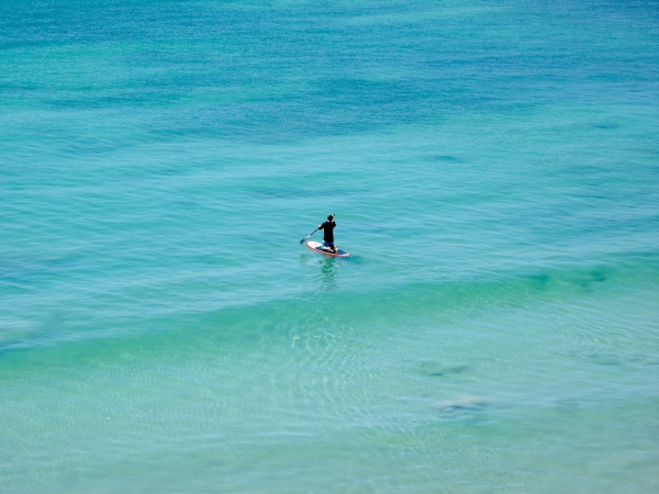 Paddle boarding in front of your condo