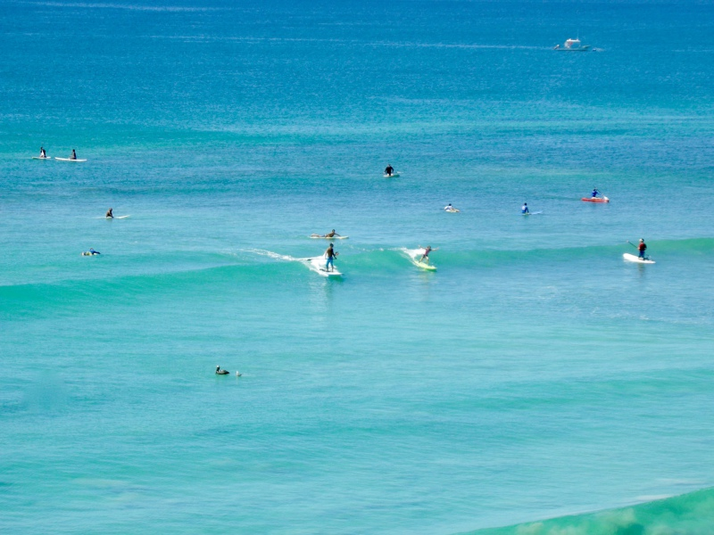 Paddle board an surfing at Beachfront Punta Mita