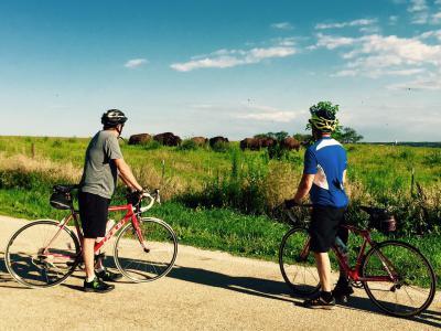 Bike tours, bike rentals