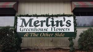 Merlin's Greenhouse Flowers and the Other Side