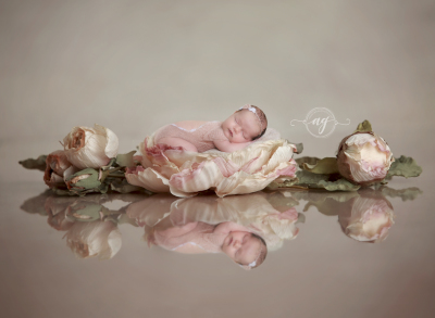 best photographer, client reviews, photographer referrals, family photographer, corporate photographer, newborn photographer, maternity photographer