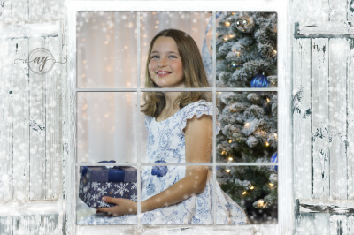 Christmas Studio Photo Session || Tampa, Fl