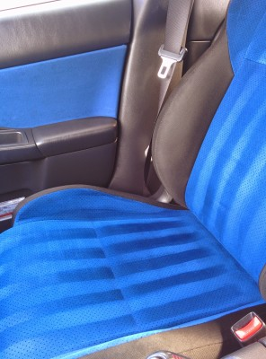 Fabric/Carpet Protection: From $40