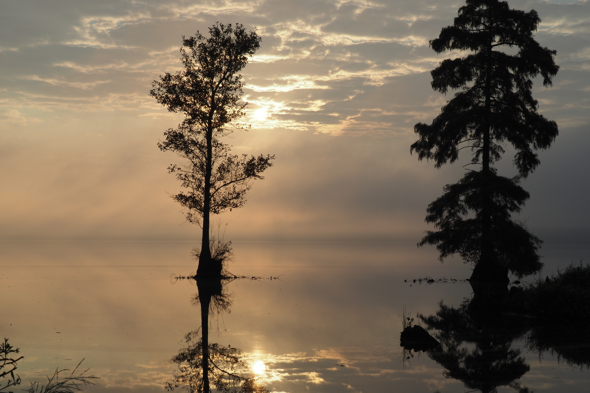 Sunrise on Lake Drummond