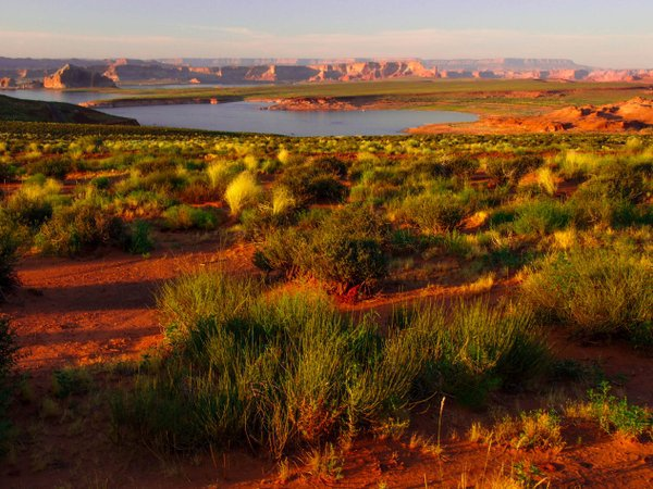 Lake Powell, Utah/Arizona
