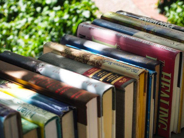 Santa Fe, Books