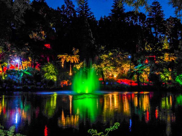Taranaki, Light Festival