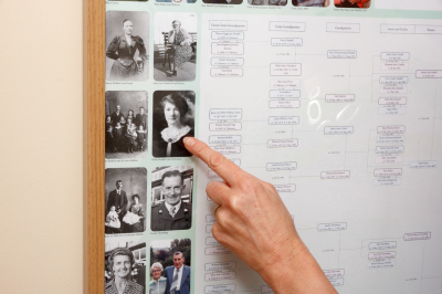 Seasons of Life - Family Tree Posters