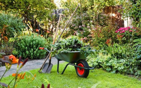 a wheel barrow and tools in a garden setting