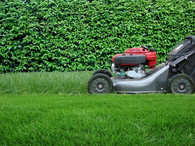 mower mowing some grass in a garden and hedge