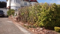 garden torquay hedge cut renovated laural
