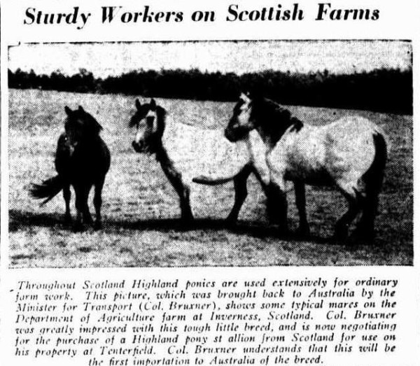 1937 news paper article