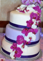 elegant two color fondant wedding cake