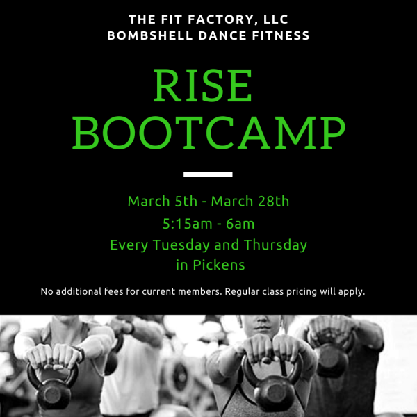 Join us for RISE Bootcamp!