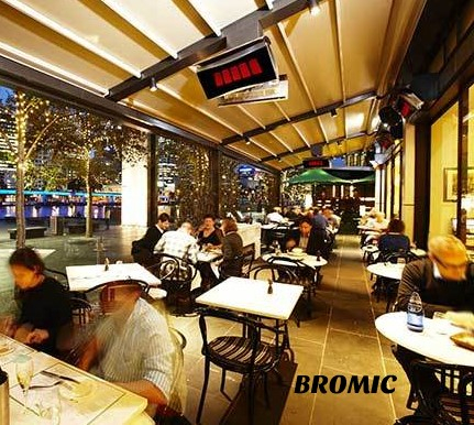 Bromic Platinum Smart-Heat; ceiling mount