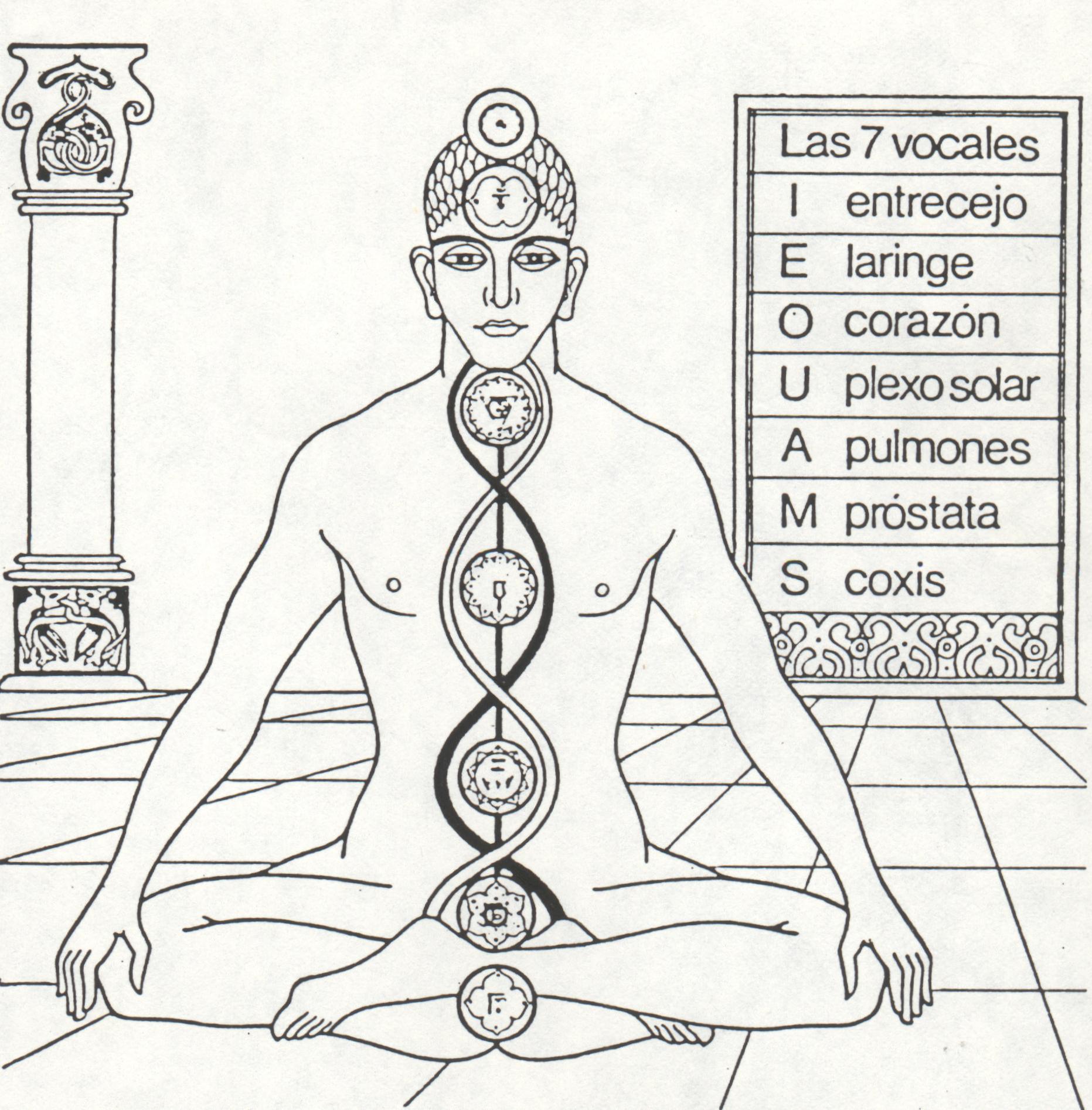 La Oculta Psicología  de Los Chakras