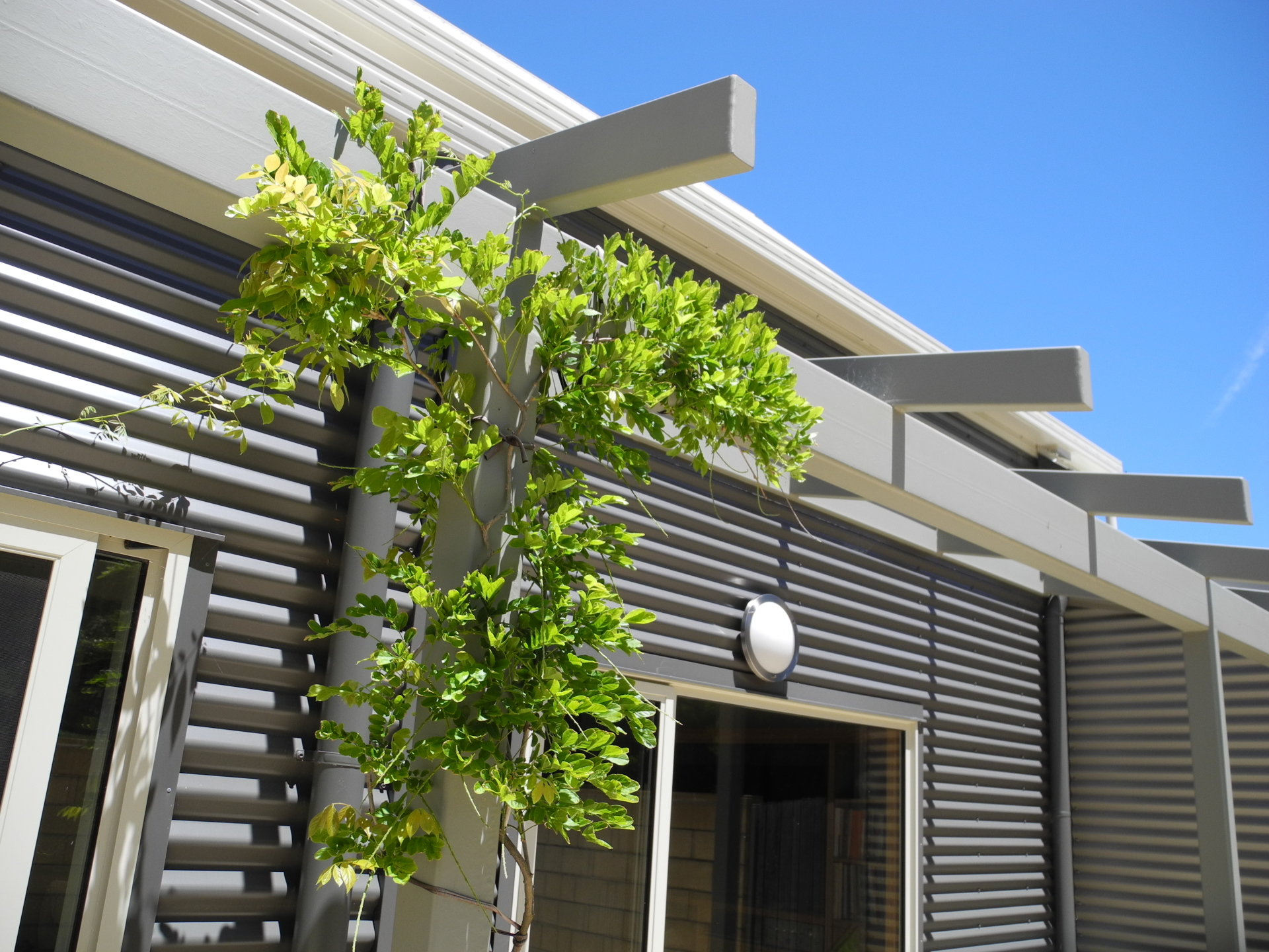 Lavers Hill House designed by sustainable architect Green Point Design. Pergola.