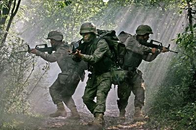 Bush Laser tag