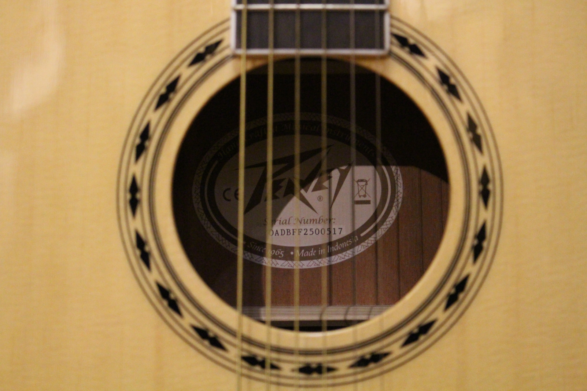 Peavey Sound Hole