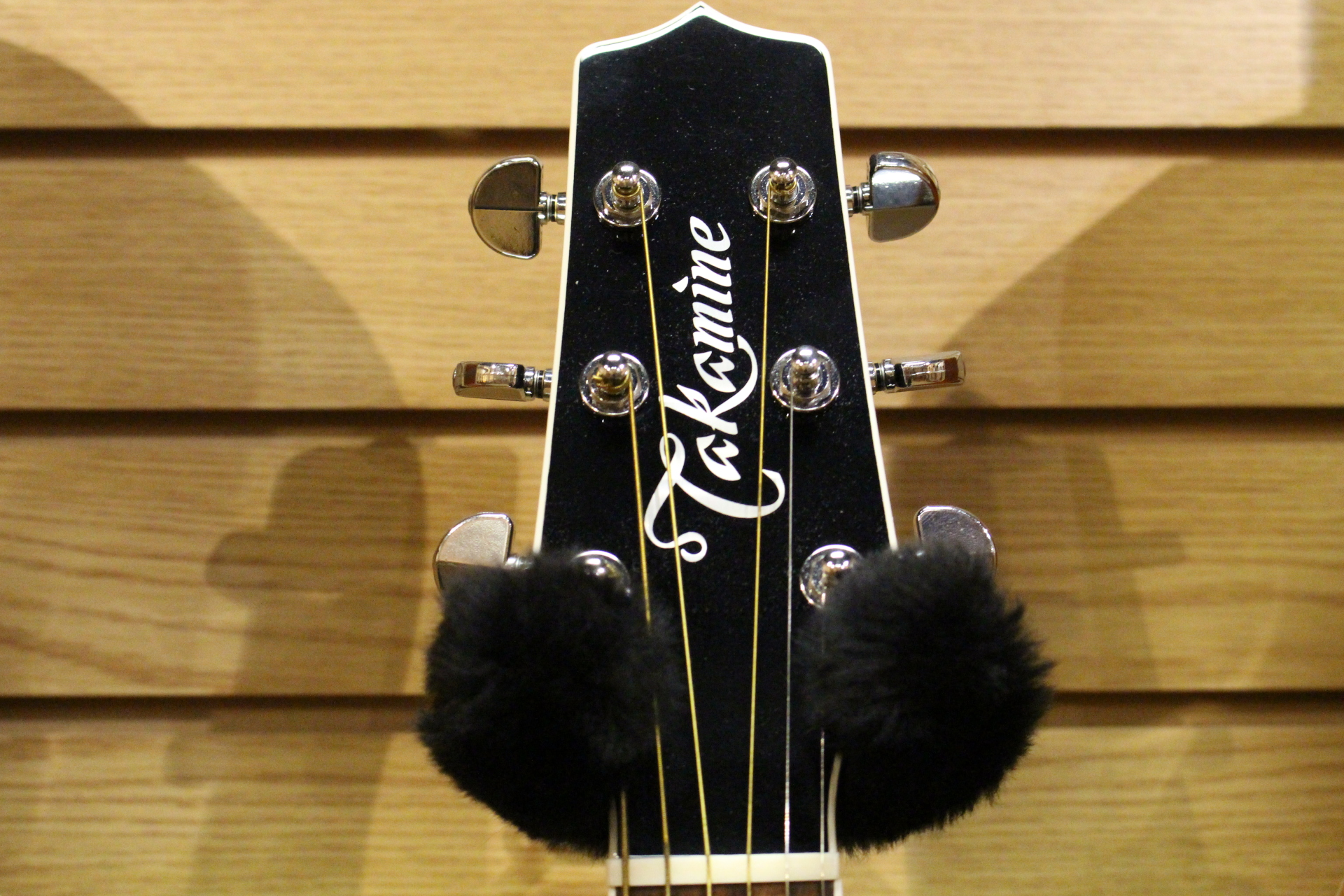 Takamine Head Stock