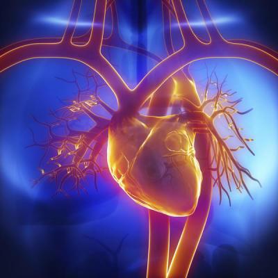 Cardiopulmonary Conditions