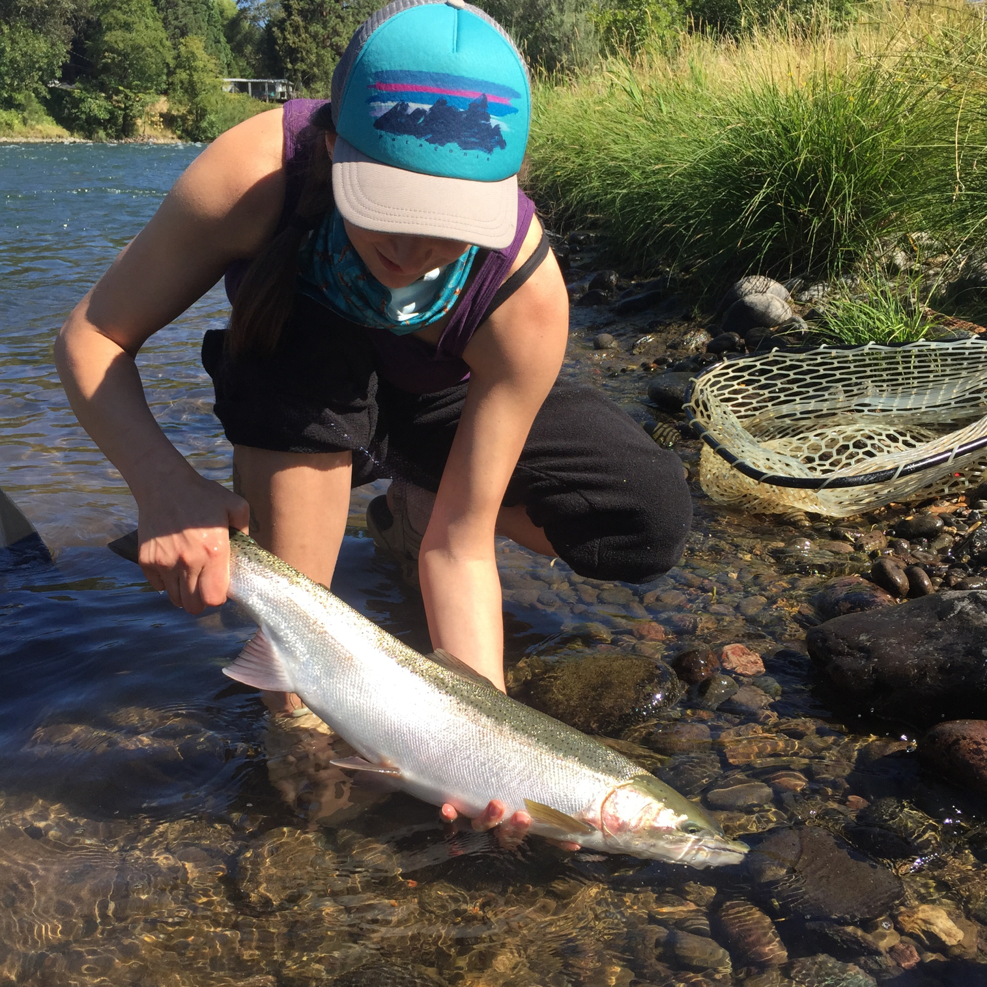 rogue river fly fishing, medford oregon fly fishing shop, rogue river guided fly fishing