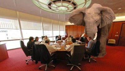 Leadership Fail: Feeding the Elephant in the Room