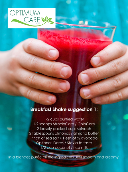 Breakfast Shake suggestion 1