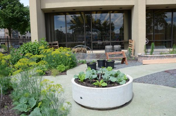 Children's edible garden at library