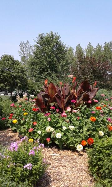 Bob Mongin Memorial Garden - Bellevue, UW Extension Office