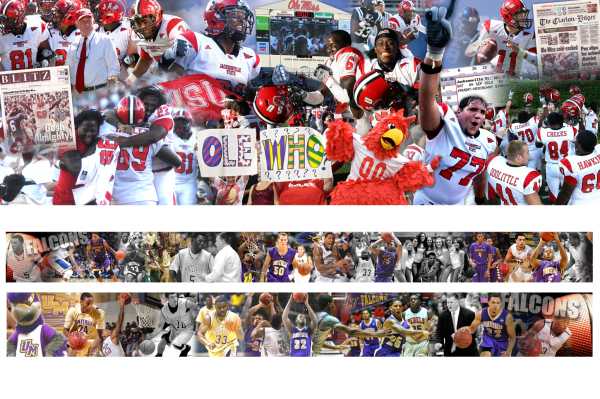 Jacksonville State University | University of Montevallo - Wall Coverings