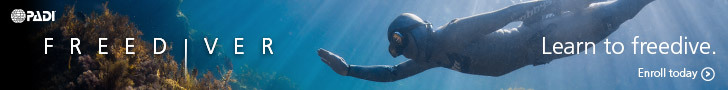www.padi.com/Scuba-Diving/padi-courses/become-a-padi-freediver/