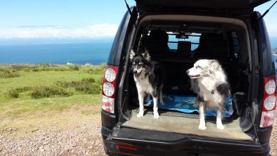 dunster, beach, salad, days, dunster beach hut, dogs welcome