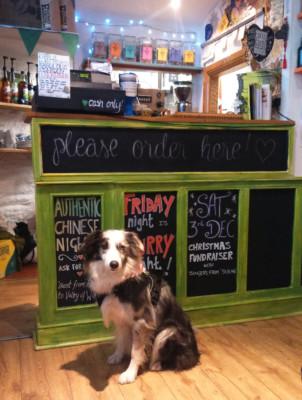 Maverick visiting Charlie Fridays Cafe Lynton